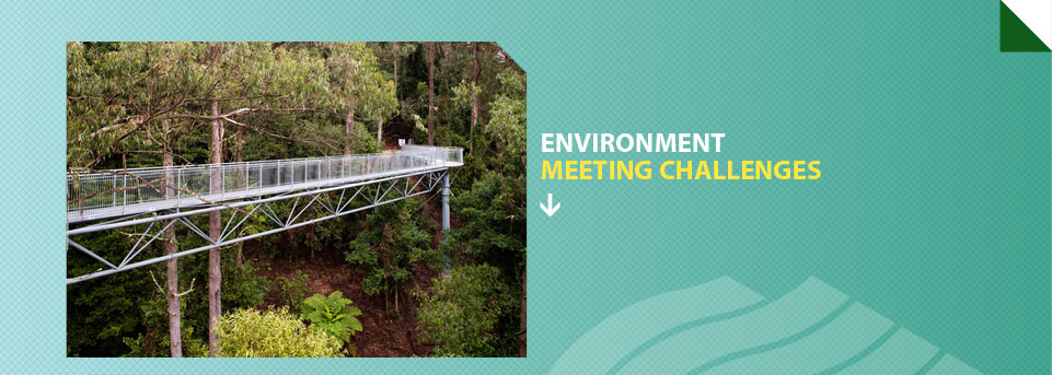 Environment Meeting Challenges